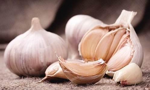 《营养与癌症》:常吃洋葱和大蒜可降低乳腺癌风险!