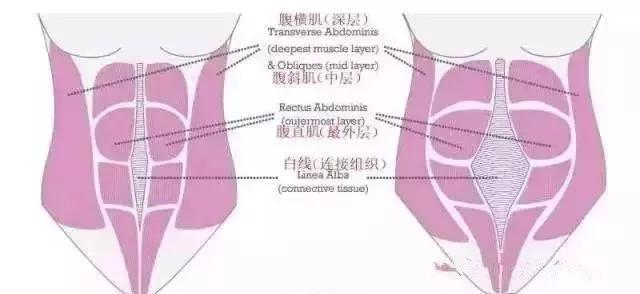 产后腹部肌肤褶皱、松弛怎么办? 6个动作助你恢复如初