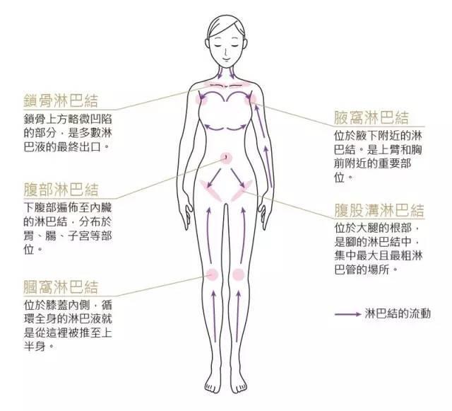 为什么女人特别需要做淋巴排毒?