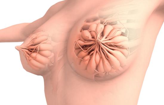 """乳腺结节容易""""癌变""""?解答你心中疑问"""