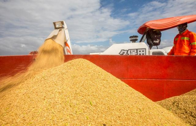 联合国称疫情可能引发粮食危机 4-5月份预计出现糟糕情况
